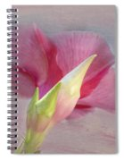 Pink Hibiscus Flower Spiral Notebook