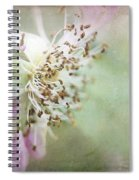 Pink Impression Spiral Notebook
