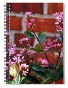 Pink Indian Hawthorne Spiral Notebook