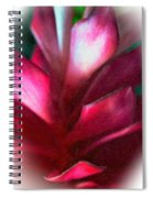 Pink Journey Impasto Spiral Notebook