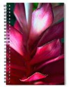 Pink Journey Spiral Notebook