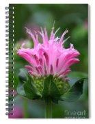 Pink July Spiral Notebook