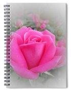 Pink Knockout Beauty Spiral Notebook