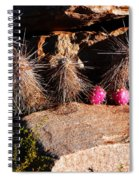 Pink Lady Cactus Spiral Notebook