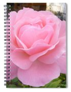 Pink Lady Spiral Notebook