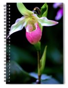 Pink Lady's Slipper Spiral Notebook
