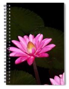 Pink Lilies And Pads Spiral Notebook