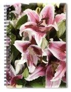 Pink Lilies I Spiral Notebook