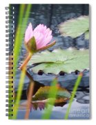Pink Lily And Pads Spiral Notebook