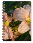 Pink Lily At Sunset 2 Spiral Notebook
