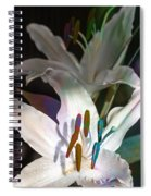 Pink Lily Dance Spiral Notebook
