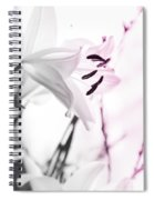 Pink Lily Feature Spiral Notebook