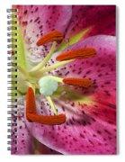 Pink Lily Up Close Spiral Notebook