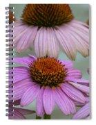 Pink Majesty Spiral Notebook