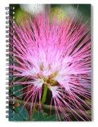 Pink Mimosa Flower Spiral Notebook