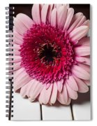 Pink Mum On Piano Keys Spiral Notebook