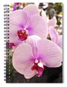 Pink Orchid Duo Spiral Notebook