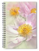 Pink Peony Flowers Parade Spiral Notebook