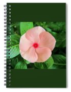 Pink Perfection Spiral Notebook