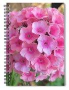 Pink Phlox 2 Spiral Notebook