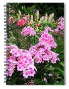 Pink Phlox Spiral Notebook