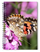 Pink Phlox With Butterfly Spiral Notebook