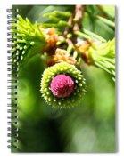 Pink Point Spiral Notebook