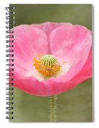 Pink Poppy Flower Spiral Notebook