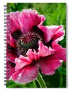 Pink Poppy Spiral Notebook