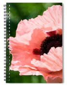 Pink Poppy Today Spiral Notebook