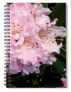 Pink Rhodies Spiral Notebook