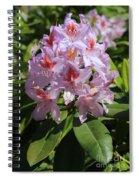 Pink Rhododendron In Sunshine Spiral Notebook