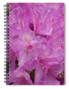 Pink Rhododendron Spiral Notebook