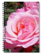 Pink Rose Flower Floral Art Prints Roses Spiral Notebook