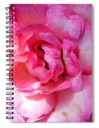 Rose With Touch Of Pink Spiral Notebook