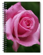Pink Rose Perfection Spiral Notebook
