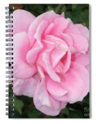 Pink Rose Square Spiral Notebook