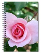 Pink Rose - Square Print Spiral Notebook