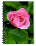 Pink Rose Volunteer Spiral Notebook