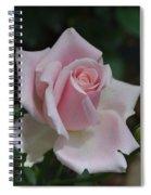 Pink Rosebud Spiral Notebook