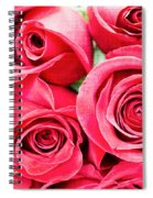 Pink Roses Flowers  Spiral Notebook