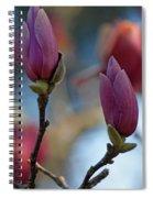 Pink Saucer Magnolia IIi Spiral Notebook