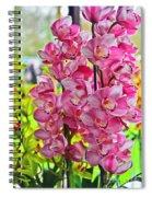 Pink Shadows Spiral Notebook
