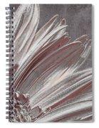 Pink Silver Spiral Notebook