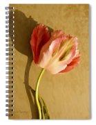 Pink Splendor  Spiral Notebook