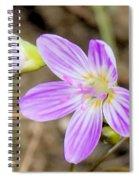 Pink Spring Beauty Spiral Notebook