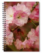 Pink Spring Blossoms Spiral Notebook