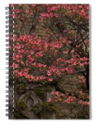 Pink Spring - Dogwood Filigree And Lace Spiral Notebook