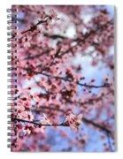 Pink Spring Spiral Notebook