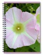 Pink Star 8706 Spiral Notebook